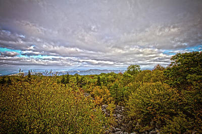 Photograph - Dolly Sods Autumn by Daniel Houghton