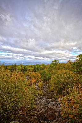 Photograph - Dolly Sods Fall by Daniel Houghton