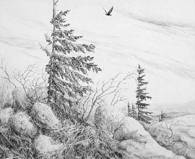 Beautiful Vistas Drawing - Dolly Sods- Looking Northward by Steve Mountz