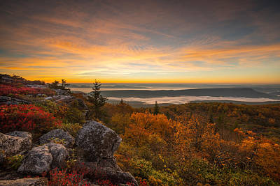 Photograph - Dolly Sods Wilderness Peak Fall Sunrise by Rick Dunnuck
