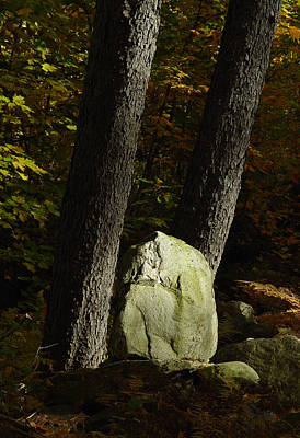 Cummington Photograph - Dolmen In The Works by Rosemary Wessel