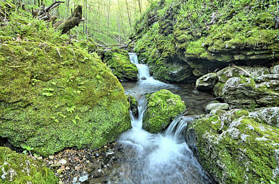 Photograph - Dolomite Creek by Bonfire Photography