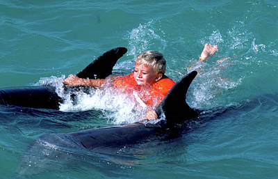 Photograph - Dolphin Adventure In Florida Keys by Carl Purcell