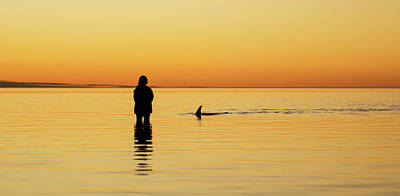 Monkey Mia Photograph - Dolphin And Girl by Gary Wright