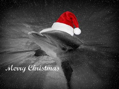 Dolphin Christmas Art Print