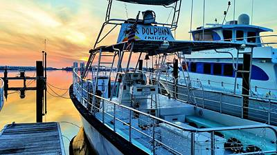 Photograph - Dolphin Cruises by JC Findley
