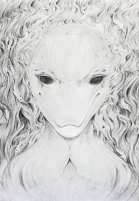 Dolphin Face Morph Original