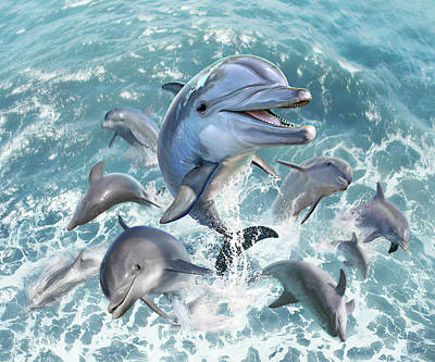 Dolphin Wall Art - Digital Art - Dolphin Jump by Jerry LoFaro