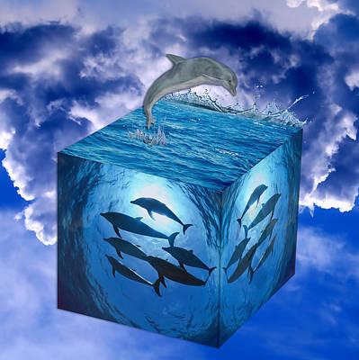 Dolphin Mixed Media - Dolphin by Marvin Blaine
