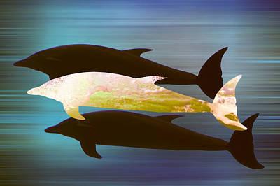 Dolphin Mixed Media - Dolphin Pod by Sharon Lisa Clarke