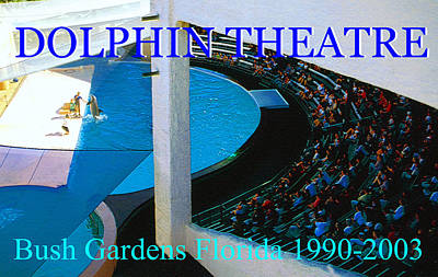 Classic Marine Art Painting - Dolphin Theatre Bush Gardens Florida by David Lee Thompson