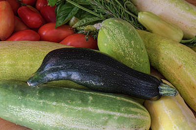 Photograph - Dolphin Zucchini  by James BO Insogna