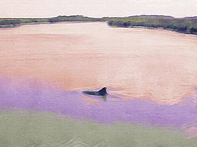 Photograph - Dolphins In The River by Patricia Greer