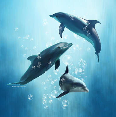 Bottlenosed Digital Art - Dolphins In The Sea by Barbara Osumi