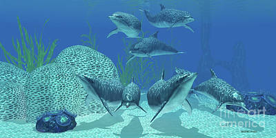 Cetacean Digital Art - Dolphins Underwater by Corey Ford