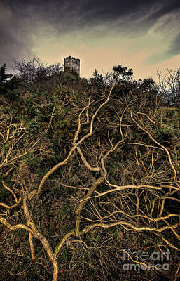 North Wales Uk Photograph - Dolwyddelan Castle by Meirion Matthias