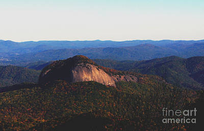 Photograph - Dome Top by Debra Crank