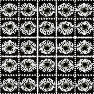 Digital Art - Domed Kaleidescope by Ellen Barron O'Reilly