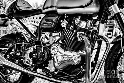 Photograph - Dominator Monochrome by Tim Gainey