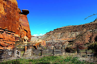 Photograph - Dominguez Escalante Canyon Colorado II by Dale E Jackson