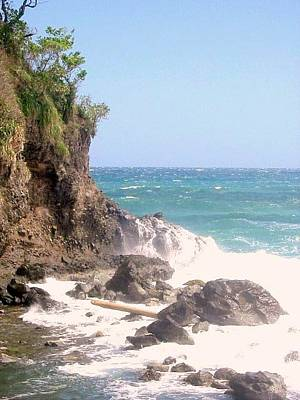 Photograph - Dominica North Atlantic Coast by Ian  MacDonald