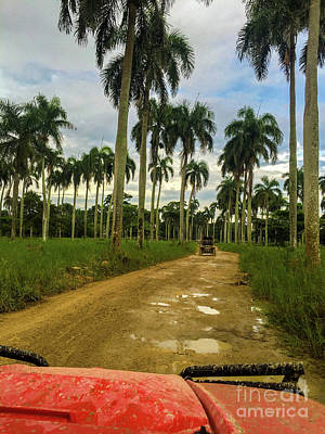 Photograph - Dominican Republic Atv Adventure by Jason Sullivan