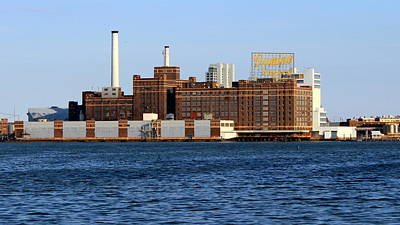Photograph - Domino Sugar by Joseph Skompski