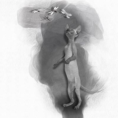 Anne Geddes Florals - Don Sphynx Kitten No 02 by Mia Stedt