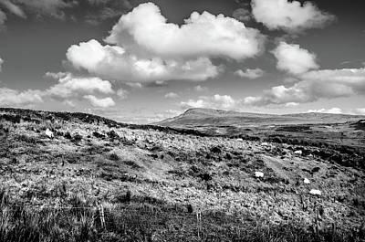 Photograph - Donegal Scene    by Martina Fagan