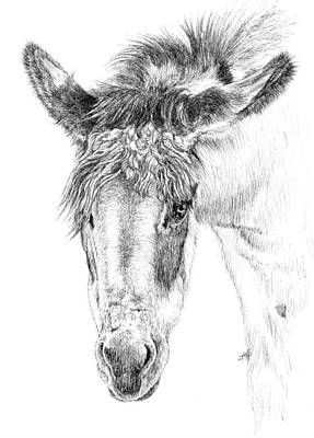 Painting - Donkey 1 by Keran Sunaski Gilmore