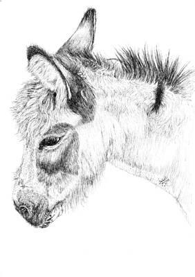 Donkey 2 Art Print by Keran Sunaski Gilmore