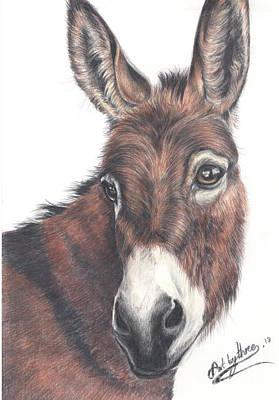 Drawing - Donkey by Art By Three Sarah Rebekah Rachel White