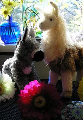 Donkey Joti And Dali Llama Art Print by Christina Gardner