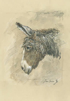 Farm Animal Painting - Donkey Portrait by Juan Bosco
