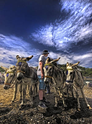 Pleasure Photograph - Donkey Rides by Meirion Matthias
