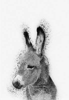 Donkey Art Print by Taylan Apukovska