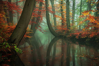 Live Your Dream Art Print by Martin Podt