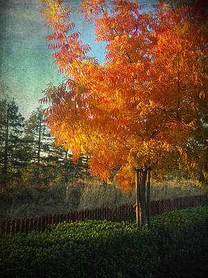 Autumn Landscape Digital Art - Don't Ever Let Go by Laurie Search