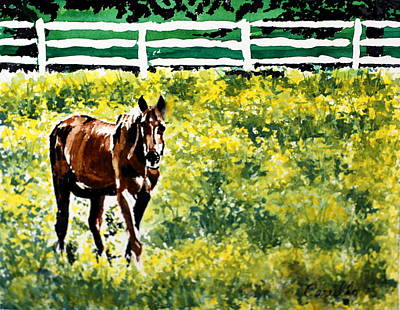 Ruben Carrillo Wall Art - Painting - Don't Fence Me In by Ruben Carrillo