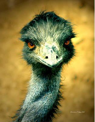 Emu Digital Art - Don't Hate Me Because I'm Beautiful II by Christine S Zipps