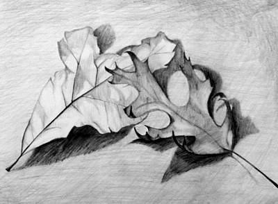 Art Print featuring the drawing Don't Leaf Me by Jean Haynes
