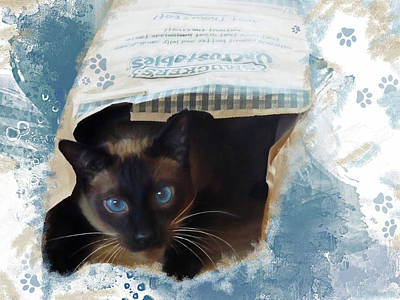 Paper Bags Photograph - Don't Let The Cat Out Of The Bag by Donna Kennedy