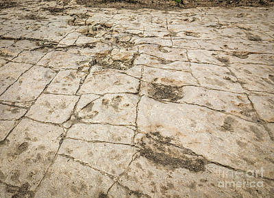 Alluvium Photograph - Don't Look Back by Jon Burch Photography