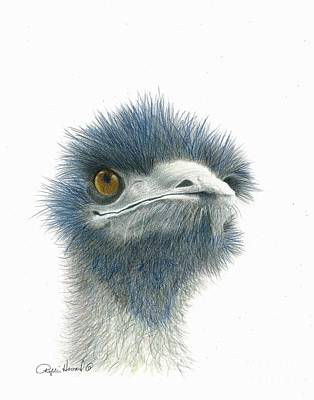 Emu Drawing - Dont Mess With Emu by Phyllis Howard