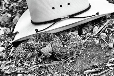Photograph - Don't Touch My Stetson Black And White by JC Findley