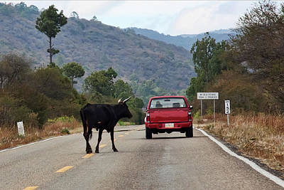 Photograph - Don't Travel With A Red Car In Mexico  by Tatiana Travelways