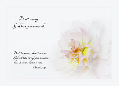 Don't Worry With Verse Art Print by Mary Jo Allen