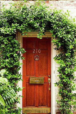 Photograph - Door 210 by Heather Green