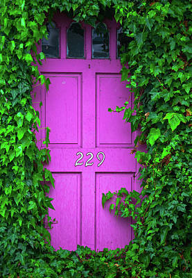 Real Life Photograph - Door 229 by Darren White