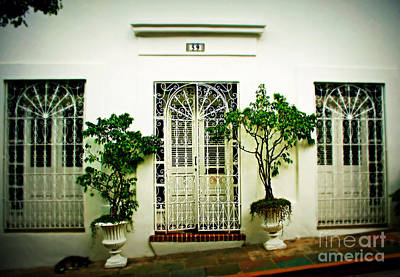 Puerto Rico Photograph - Door 59 by Perry Webster